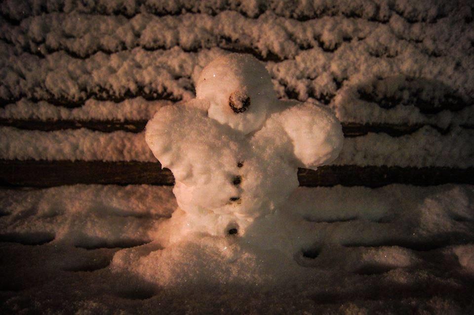 Доки комунальники чистять вулиці, тернополяни міряються сніговиками (фото), фото-5