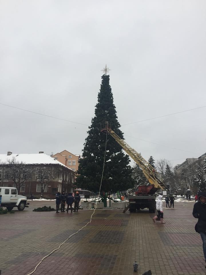 У Тернополі встановили новорічну ялинку (ФОТО), фото-1