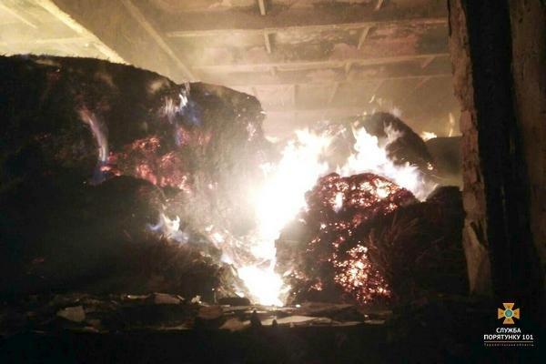На Тернопільщині рятувальники 5 годин гасили палаючу стайню площею понад 1000 м² (ФОТО), фото-1