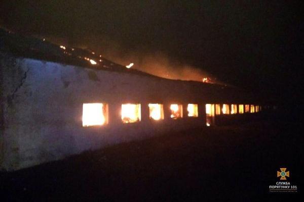 На Тернопільщині рятувальники 5 годин гасили палаючу стайню площею понад 1000 м² (ФОТО), фото-2