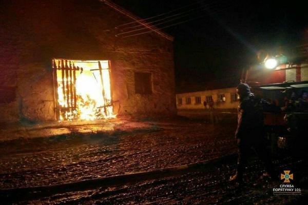 На Тернопільщині рятувальники 5 годин гасили палаючу стайню площею понад 1000 м² (ФОТО), фото-3