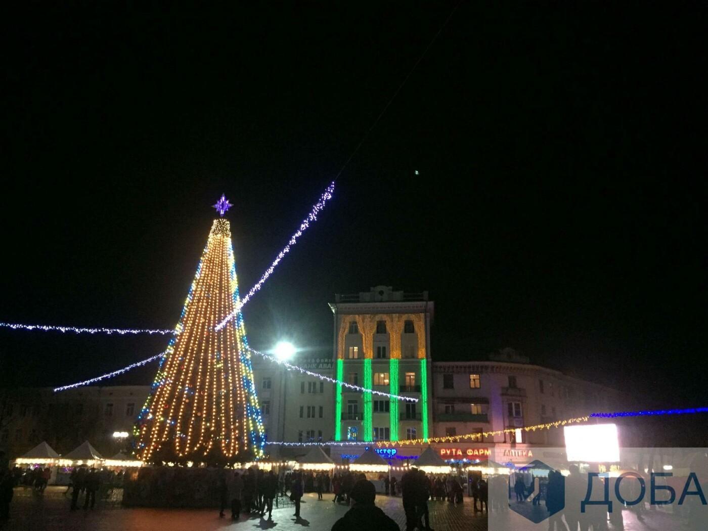 Головна ялинка Тернополя має незвичну 3D-ілюмінацію (фото, відео), фото-2
