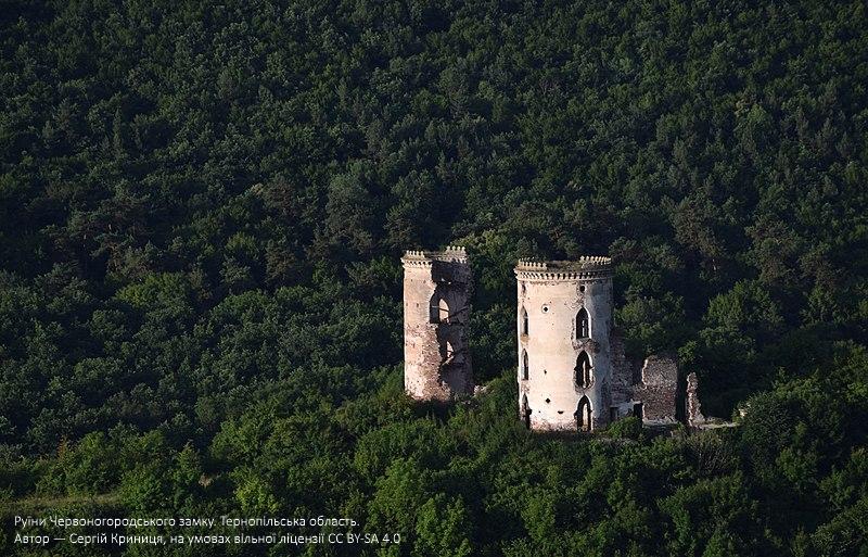 Світлини, зроблені на Тернопільщині, стали одними з кращих за версією Вікіпедії (ФОТО), фото-2