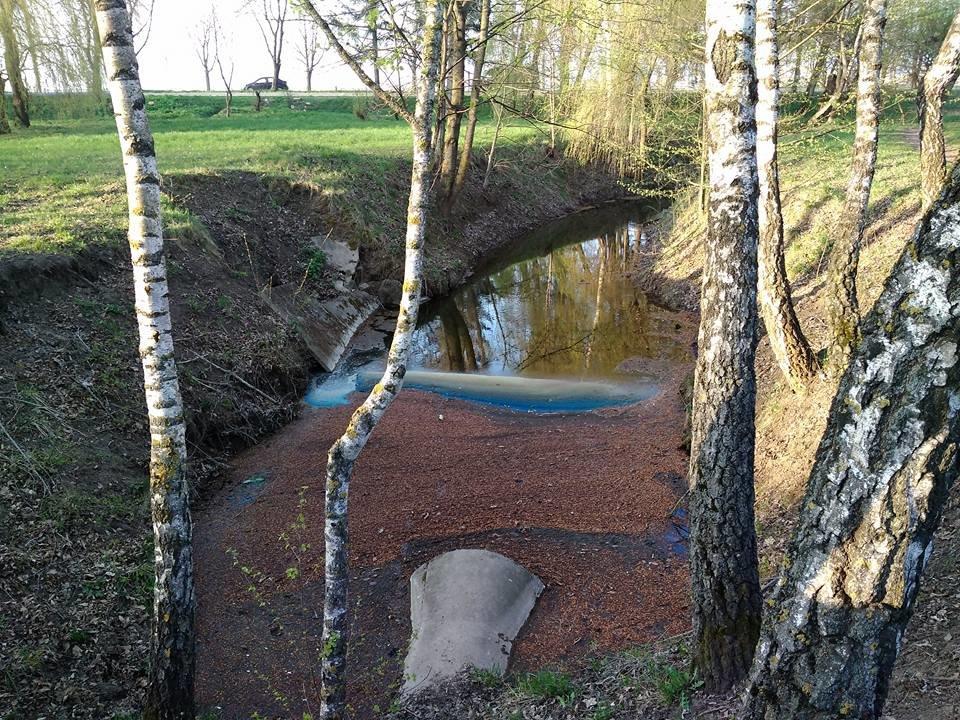 В тернопільському гідропарку вода в річці стала незвичного кольору (фото), фото-2