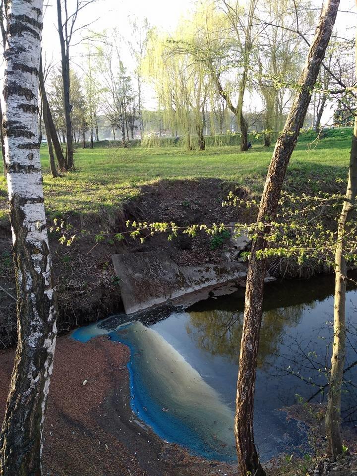 В тернопільському гідропарку вода в річці стала незвичного кольору (фото), фото-1