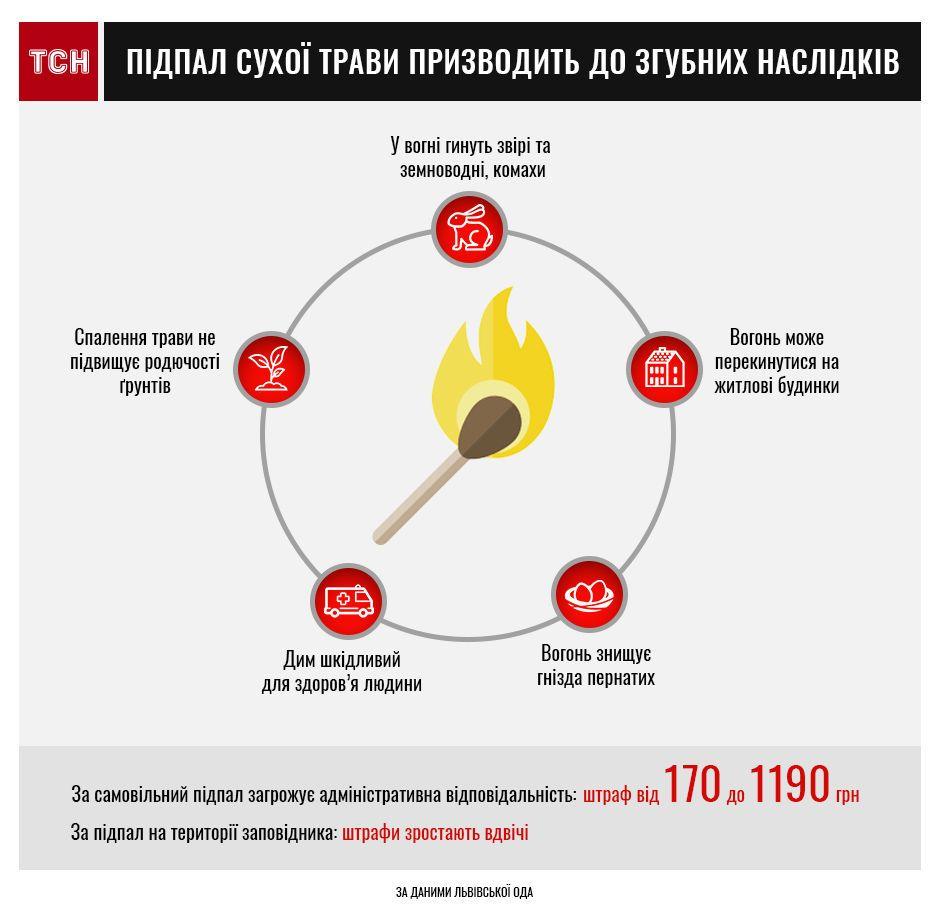 Тернопільщина - серед областей, де оголошено найвищий рівень пожежної загрози, фото-1