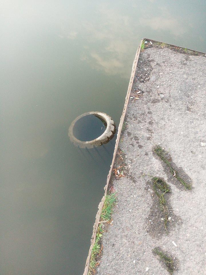 Невідомі кинули у тернопільський став сміттєві урни (ФОТО), фото-1