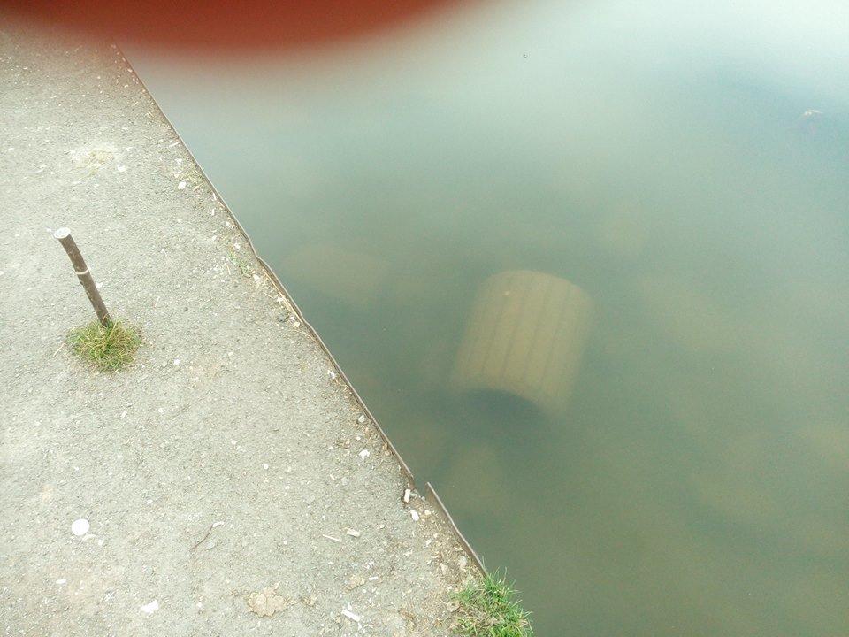 Невідомі кинули у тернопільський став сміттєві урни (ФОТО), фото-2