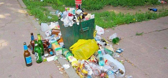 Крок до Європи: мешканці Тернопільщини викидають сміття посеред вулиці (ФОТО), фото-1