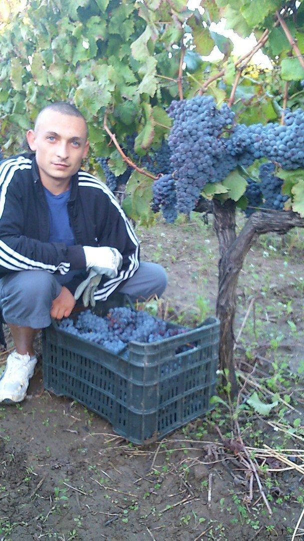 На Тернопільщині шукають хлопця, що ухиляється від призову (фото), фото-1