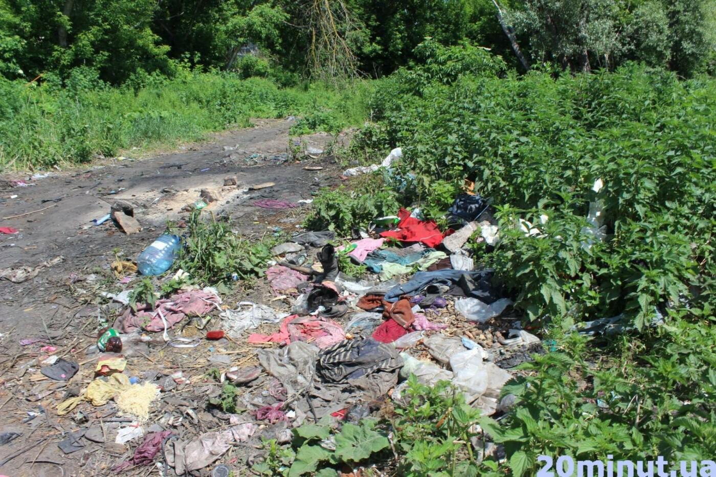 Роми з двох таборів, які жили в лісі неподалік Тернополя, поїхали у невідомому напрямку (ФОТО), фото-3