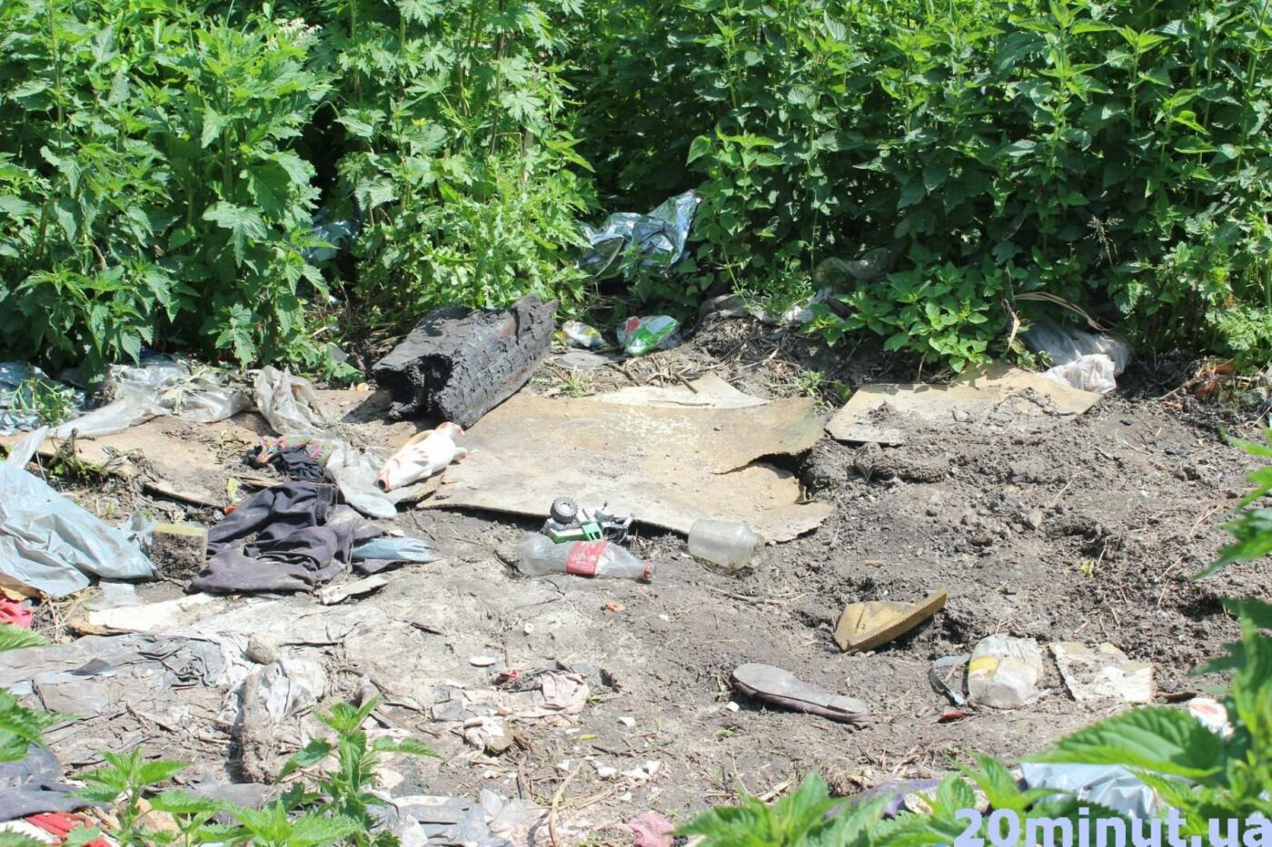 Роми з двох таборів, які жили в лісі неподалік Тернополя, поїхали у невідомому напрямку (ФОТО), фото-2
