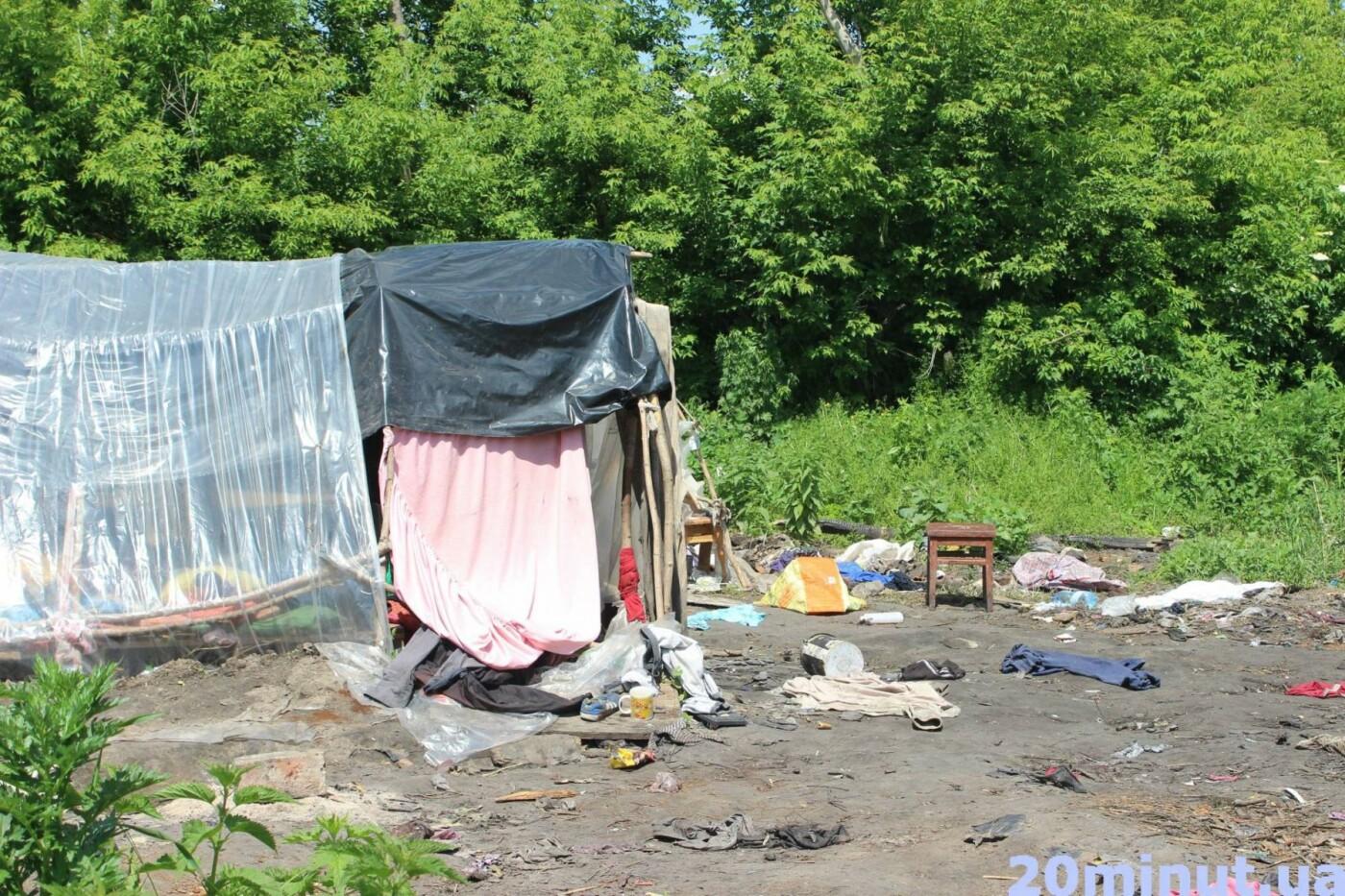 Роми з двох таборів, які жили в лісі неподалік Тернополя, поїхали у невідомому напрямку (ФОТО), фото-5