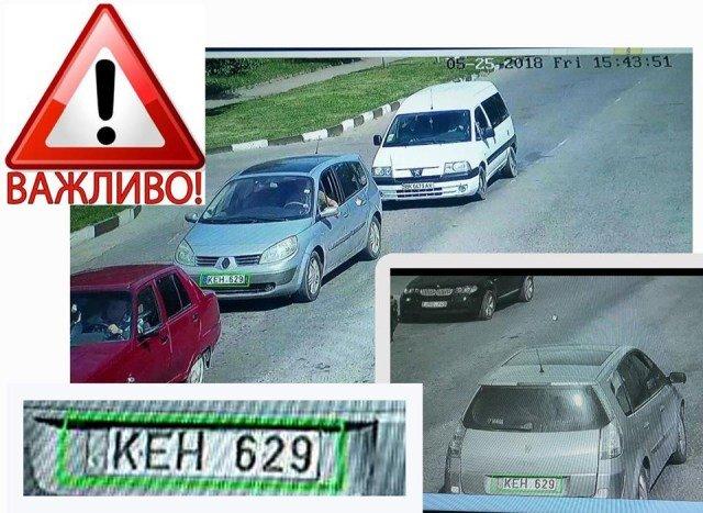 На Тернопільщині розшукують водія, який збив дівчинку-сироту і втік з місця події (фото), фото-1