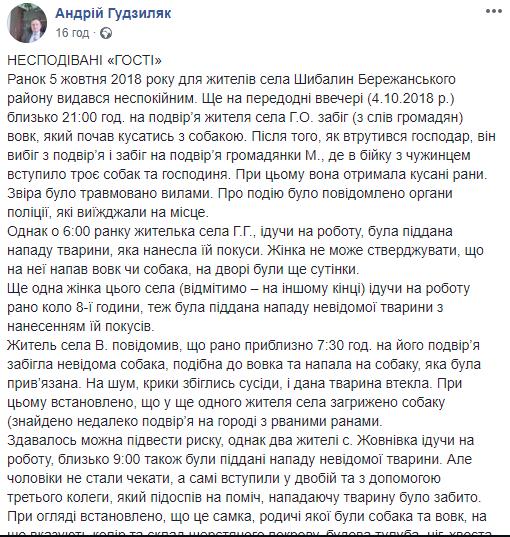 Голови вовків відправили на експертизу: з'явилися фото хижаків, які нападали на людей на Тернопільщині (ФОТО), фото-1