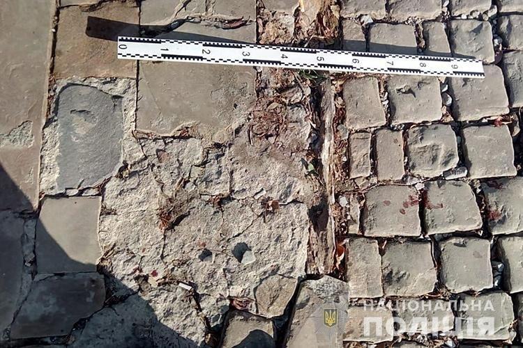 На Тернопільщині збили 70-річного велосипедиста (фото), фото-2
