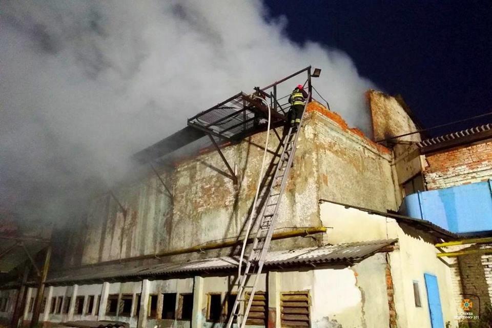 На Тернопільщині від ночі не можуть погасити масштабну пожежу (фото), фото-2