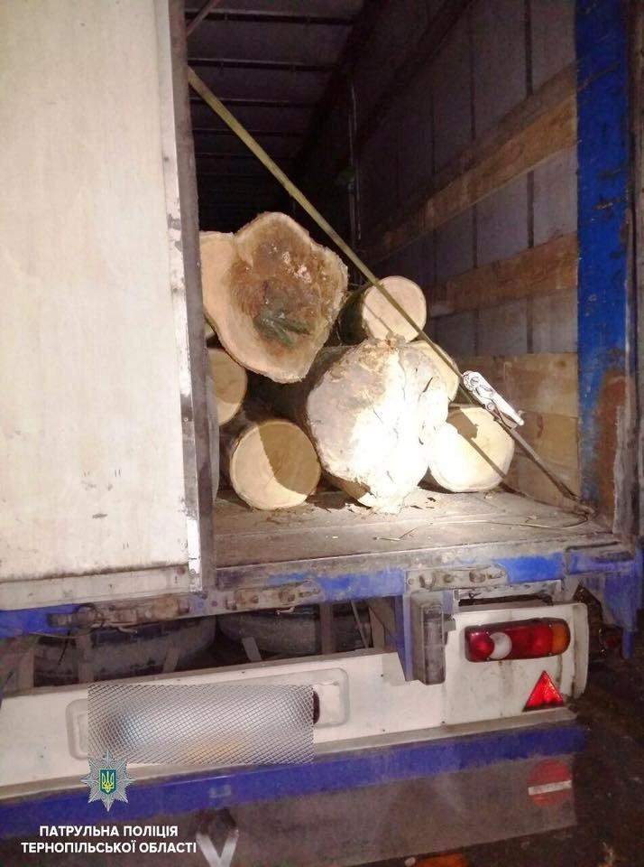 У Тернополі водій незаконно перевизив деревину,  його видало порушення ПДР (ФОТО), фото-2