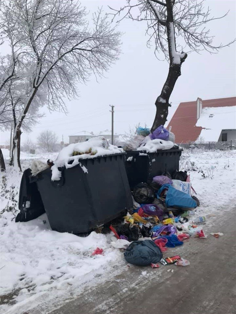 На Тернопільщині з переповнених сміттєвих баків  відходи розсипаються просто на дорогу (ФОТО), фото-2
