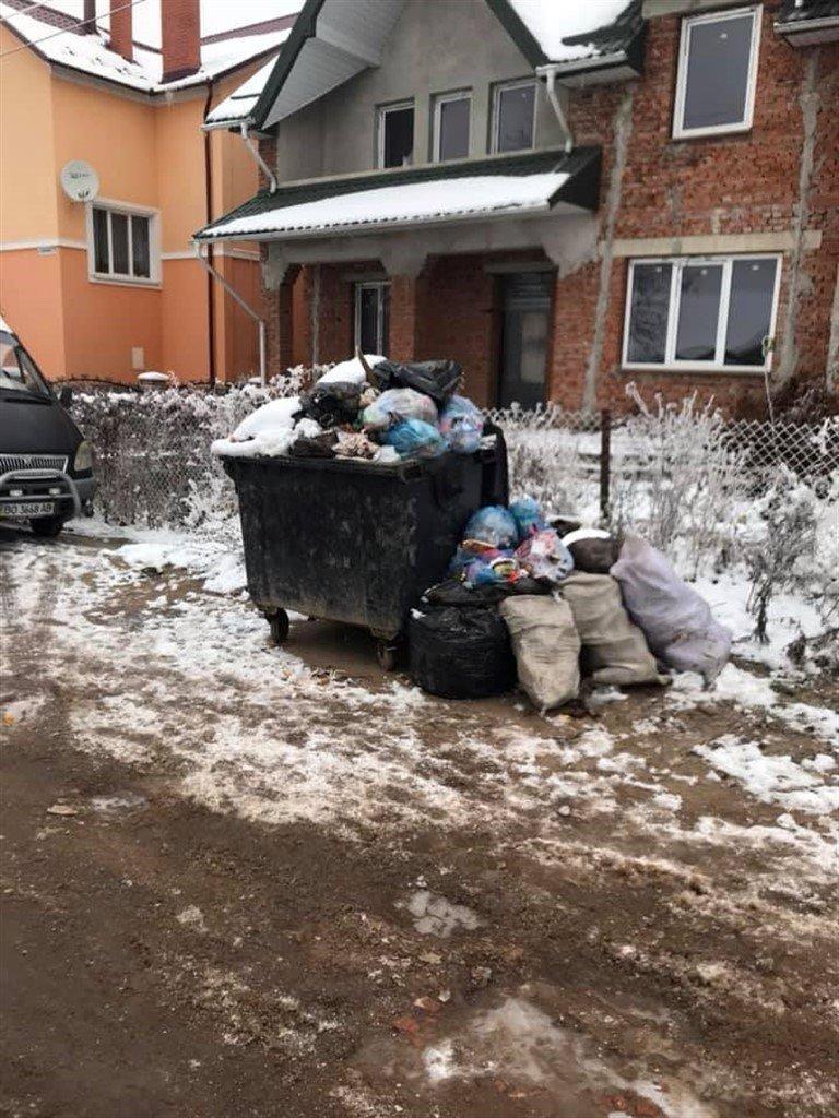 На Тернопільщині з переповнених сміттєвих баків  відходи розсипаються просто на дорогу (ФОТО), фото-4