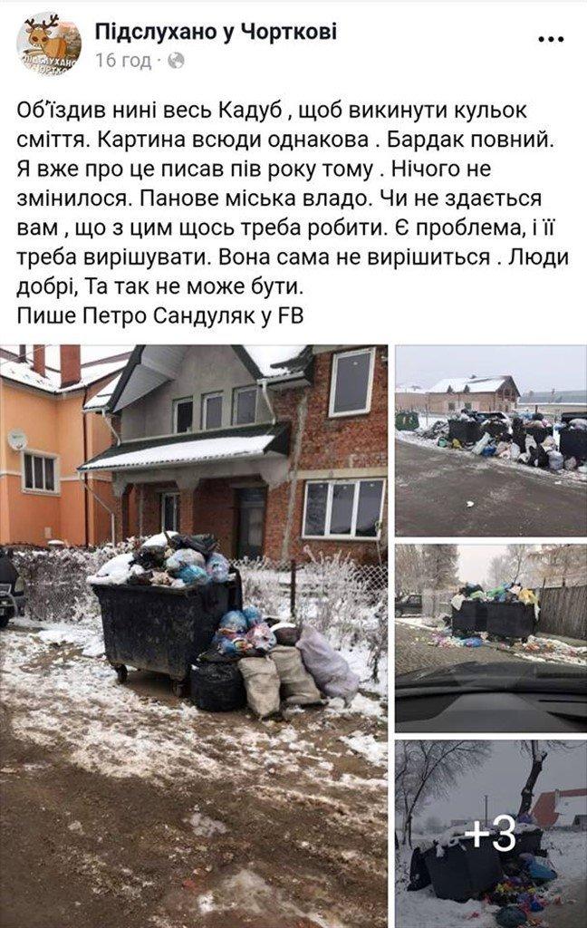 На Тернопільщині з переповнених сміттєвих баків  відходи розсипаються просто на дорогу (ФОТО), фото-5