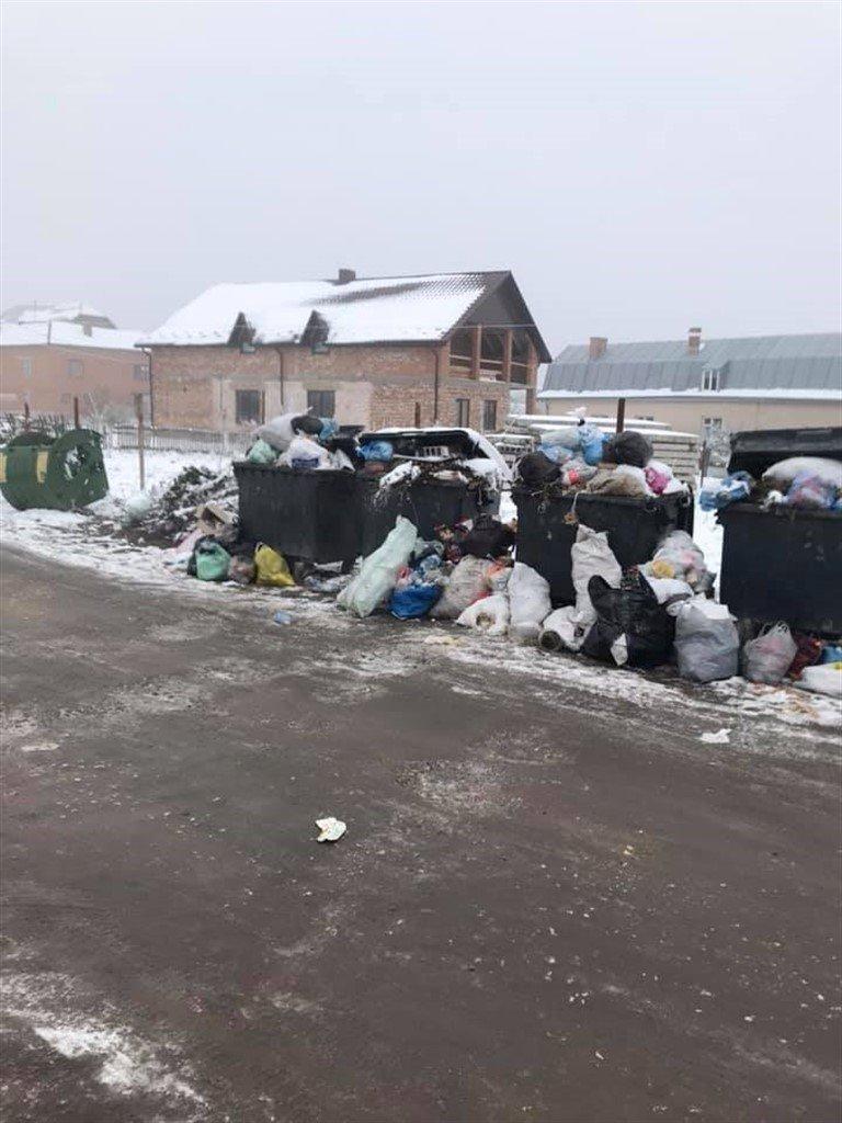 На Тернопільщині з переповнених сміттєвих баків  відходи розсипаються просто на дорогу (ФОТО), фото-3