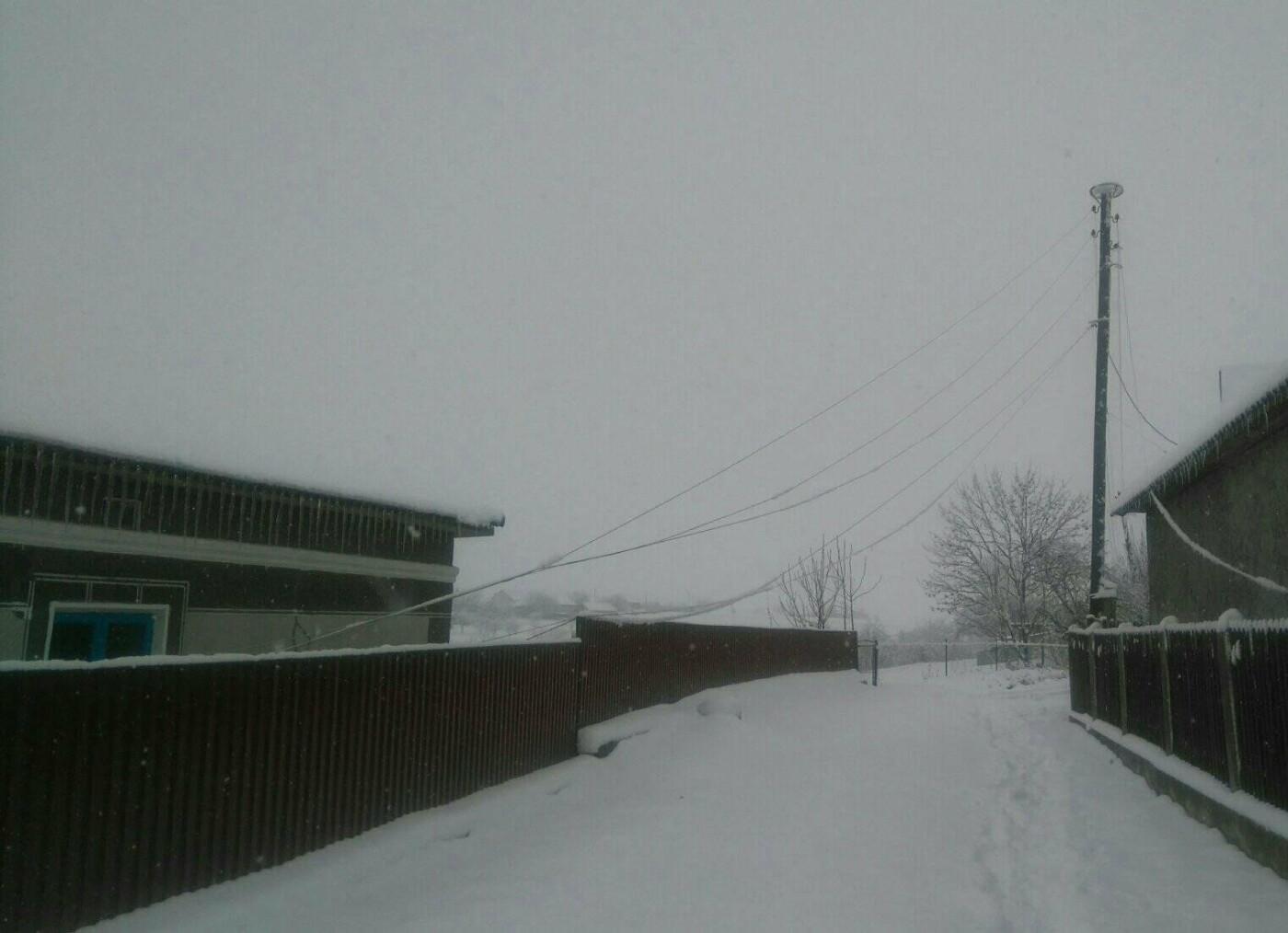 У селі  на Тернопільщині попадали електростовпи, люди від суботи сидять у темряві (ФОТО), фото-2