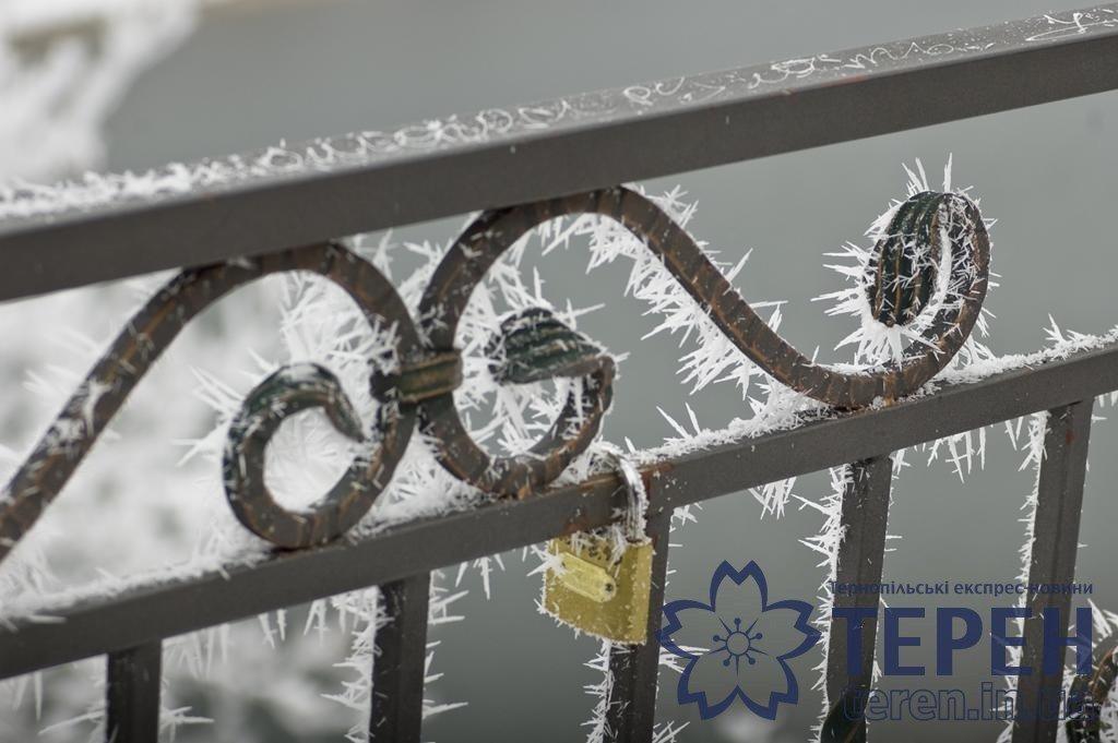 Неймовірна краса: як виглядає найвідоміший каньйон Тернопільщини під снігом (ФОТО), фото-1