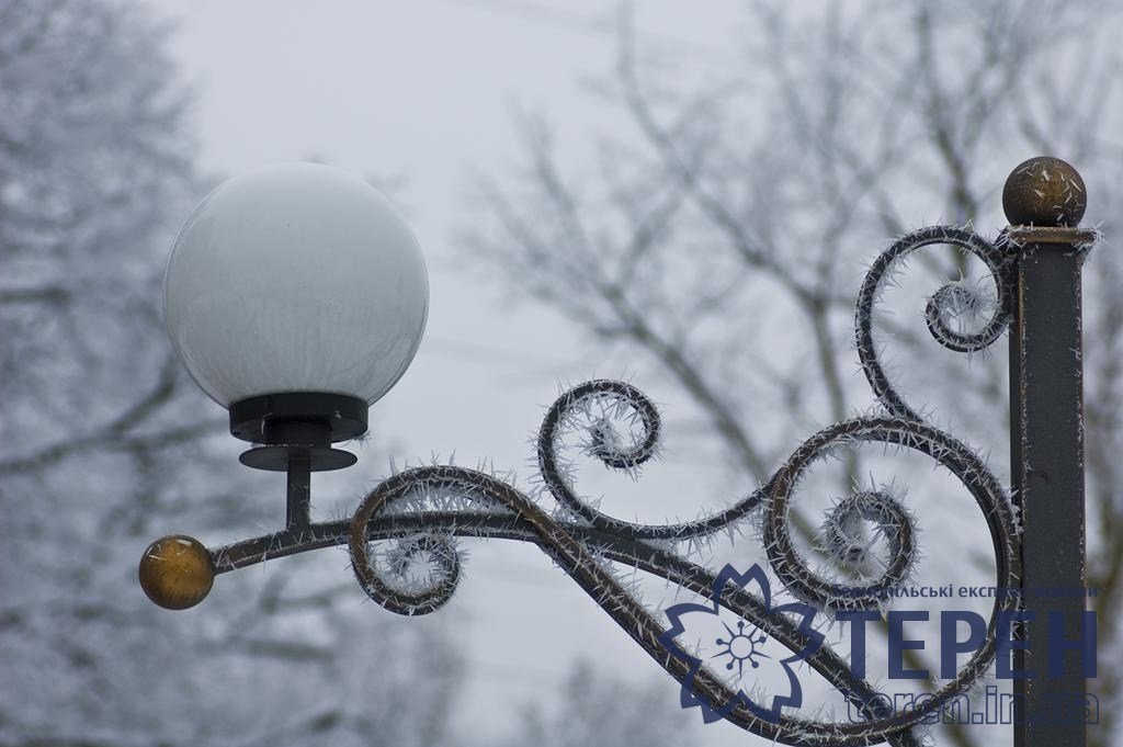 Неймовірна краса: як виглядає найвідоміший каньйон Тернопільщини під снігом (ФОТО), фото-2