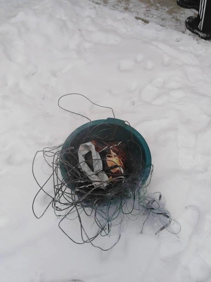 """На Тернопільщині """"на гарячому"""" впіймали рибалок-порушників (ФОТО), фото-1"""