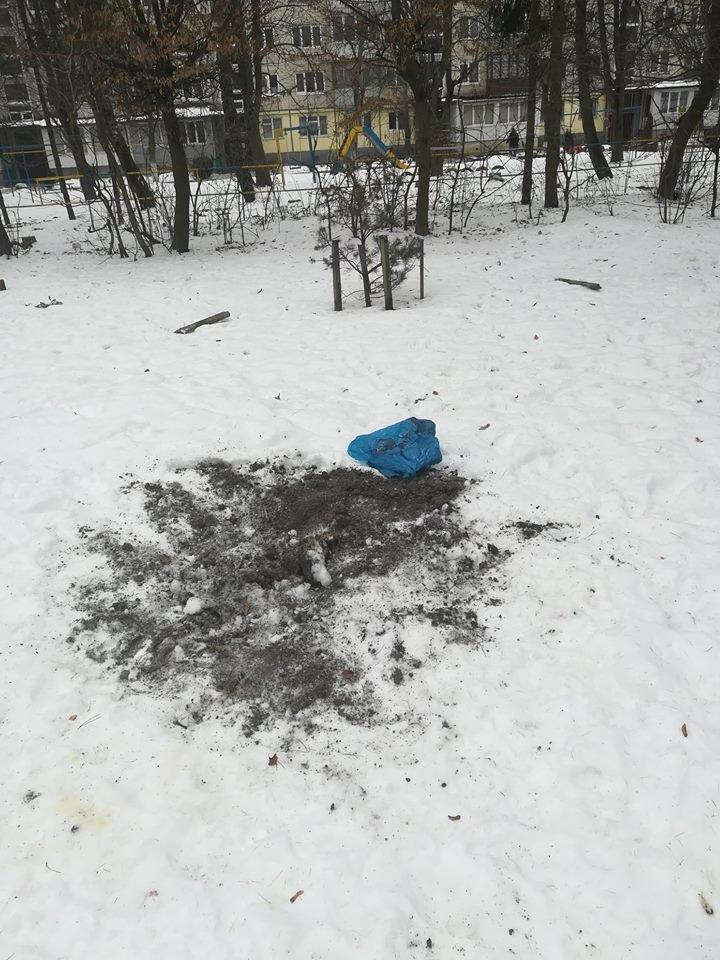 """У Тернополі промишляють """"зелені вандали"""" (фото), фото-3"""