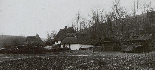 У мережі з'явилась столітня світлина одного із сіл Тернопільщини (ФОТО), фото-1