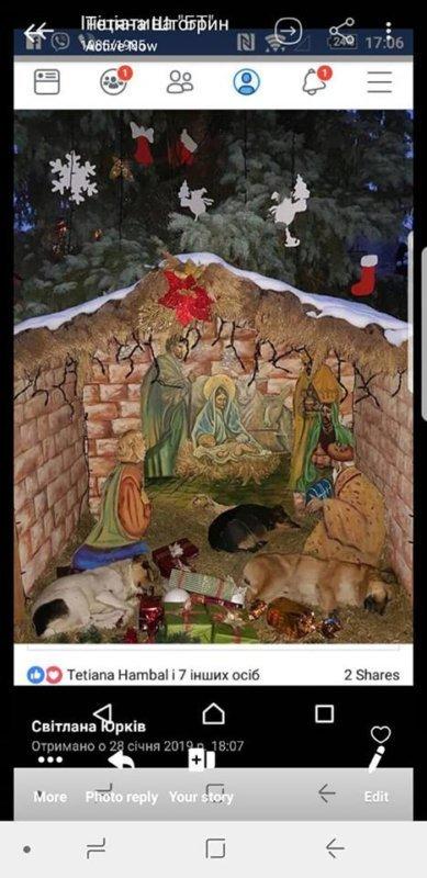 """""""В центрі в муках помирав собака"""" – у соцмережах розповіли як на Тернопільщині безжально труїли собак (ФОТО), фото-1"""