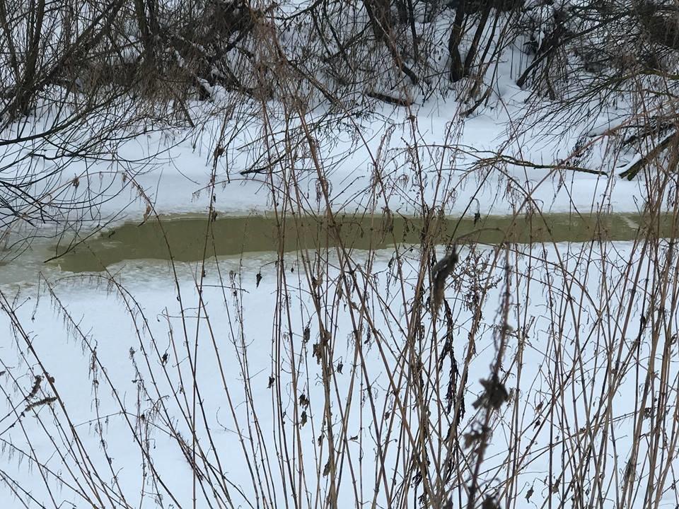 У селах на Тернопільщині стоїть стійкий неприємний сморід через викиди у річку відходів (ФОТО), фото-2