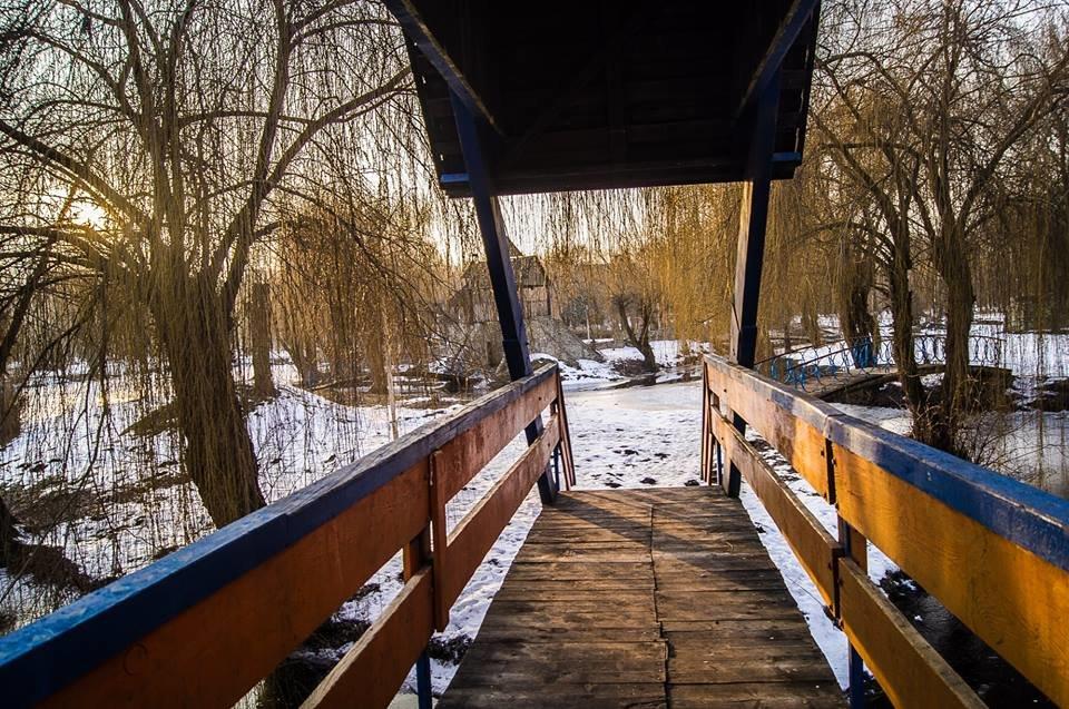 Єдиний у світі пам'ятник рибі, яка першою вийшла на берег, стоїть у Тернополі? (ФОТО), фото-5