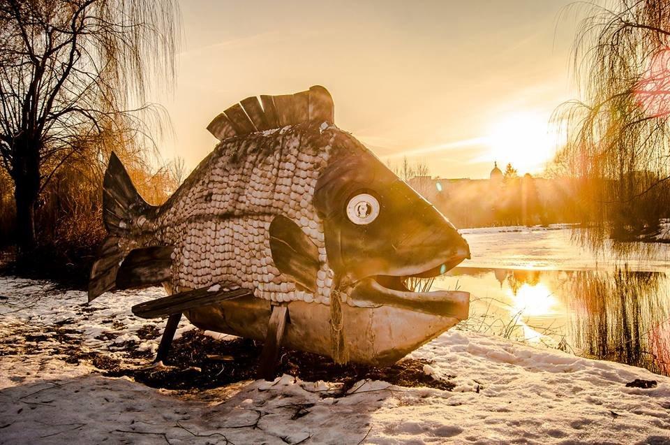 Єдиний у світі пам'ятник рибі, яка першою вийшла на берег, стоїть у Тернополі? (ФОТО), фото-1