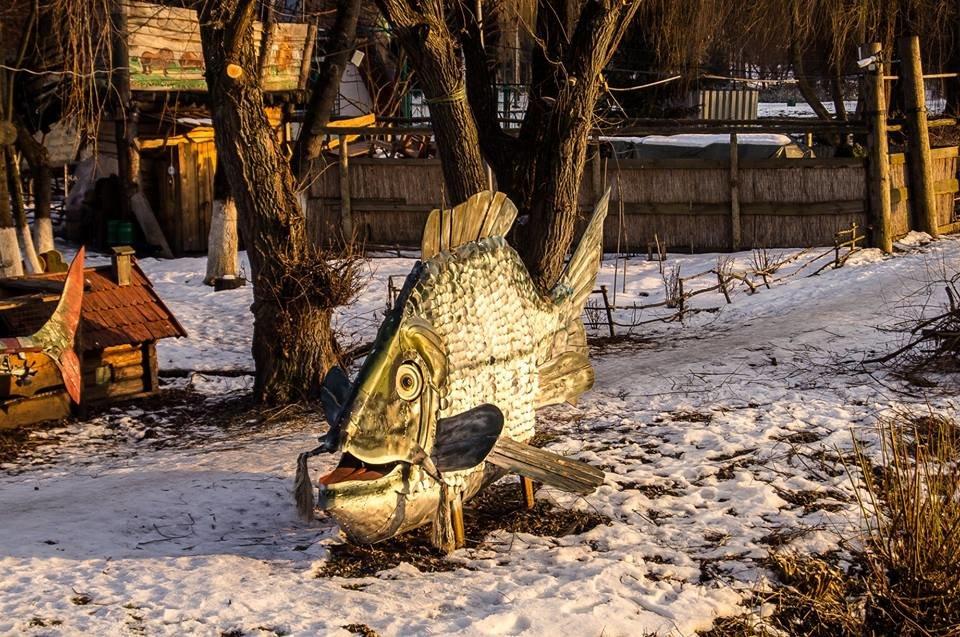 Єдиний у світі пам'ятник рибі, яка першою вийшла на берег, стоїть у Тернополі? (ФОТО), фото-3