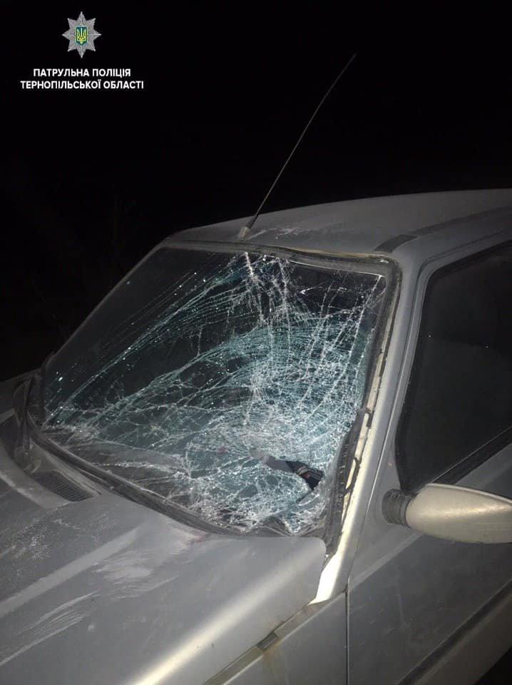 Жахлива ДТП на Тернопільщині: на міжнародній трасі загинула жінка (ФОТО), фото-2