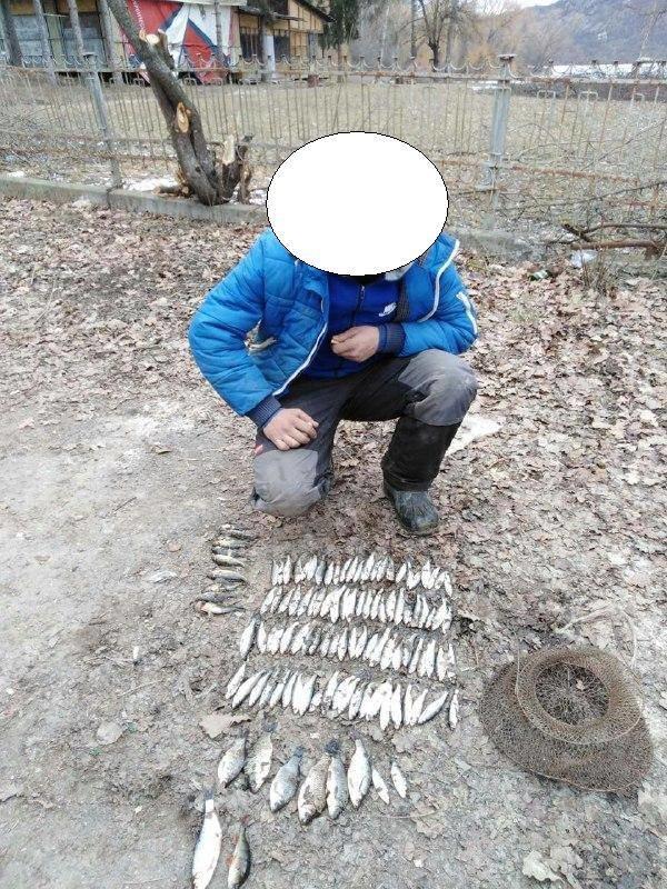 На Тернопільщині  порушники завдали понад 4 тис. грн збитків (ФОТО), фото-3