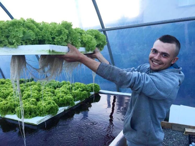 Молоде подружжя з Тернопільщини єдине в цілій області, котре вирощує салат та їстівні квіти без ґрунту (ФОТО), фото-5