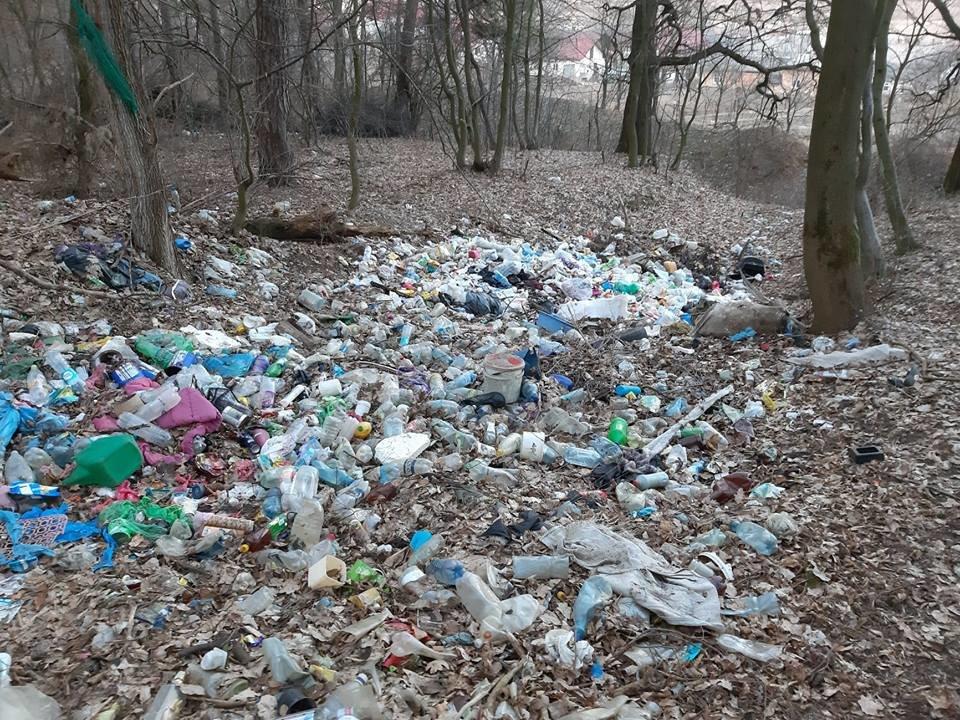 """На Тернопільщині на околиці міста """"виросло"""" величезне сміттєзвалище (ФОТОФАКТ), фото-2"""
