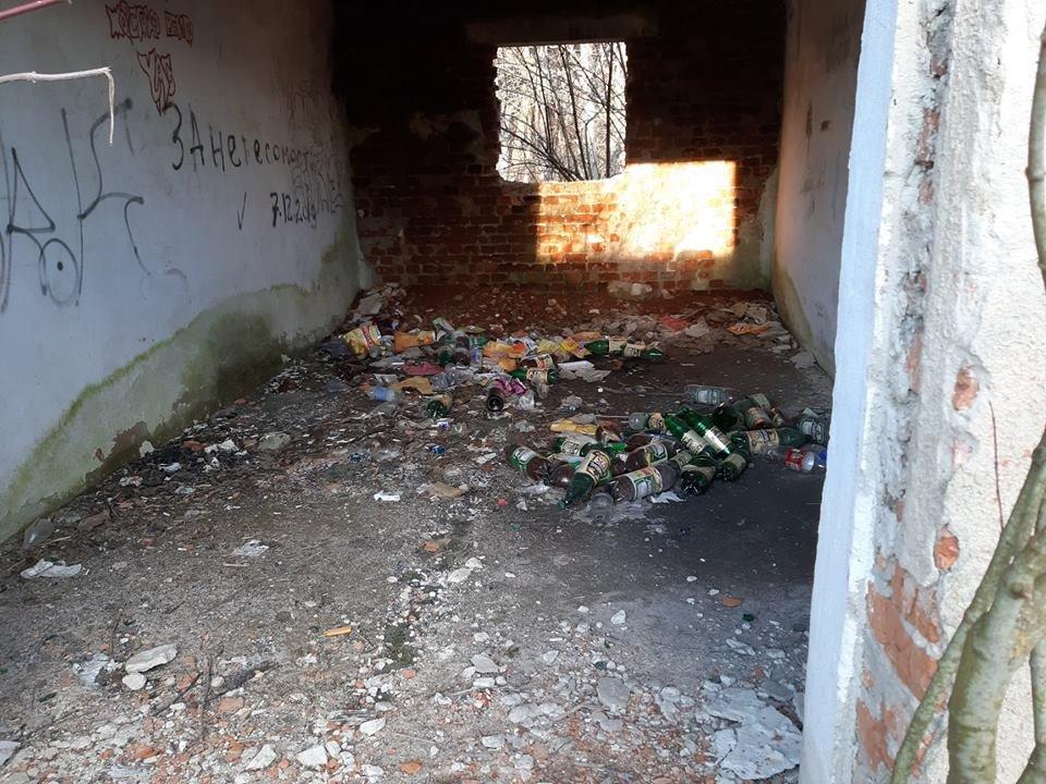 """На Тернопільщині на околиці міста """"виросло"""" величезне сміттєзвалище (ФОТОФАКТ), фото-6"""