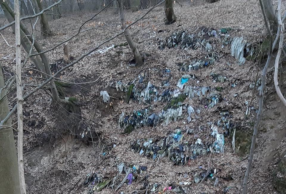 """На Тернопільщині на околиці міста """"виросло"""" величезне сміттєзвалище (ФОТОФАКТ), фото-13"""