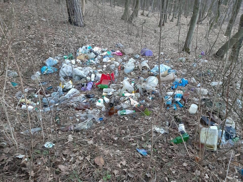 """На Тернопільщині на околиці міста """"виросло"""" величезне сміттєзвалище (ФОТОФАКТ), фото-4"""