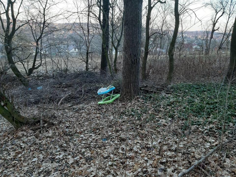 """На Тернопільщині на околиці міста """"виросло"""" величезне сміттєзвалище (ФОТОФАКТ), фото-3"""