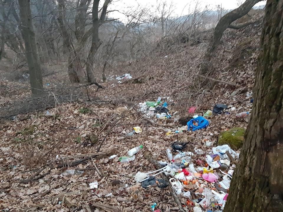 """На Тернопільщині на околиці міста """"виросло"""" величезне сміттєзвалище (ФОТОФАКТ), фото-9"""
