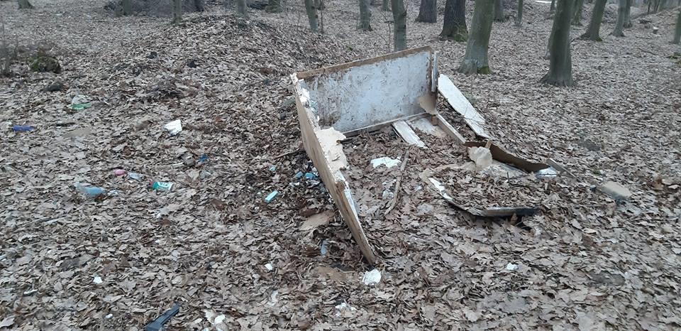 """На Тернопільщині на околиці міста """"виросло"""" величезне сміттєзвалище (ФОТОФАКТ), фото-11"""