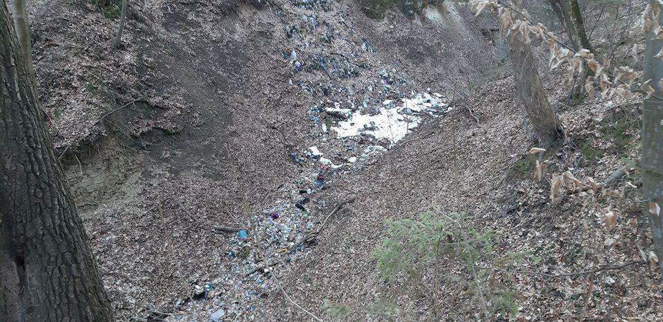 """На Тернопільщині на околиці міста """"виросло"""" величезне сміттєзвалище (ФОТОФАКТ), фото-5"""