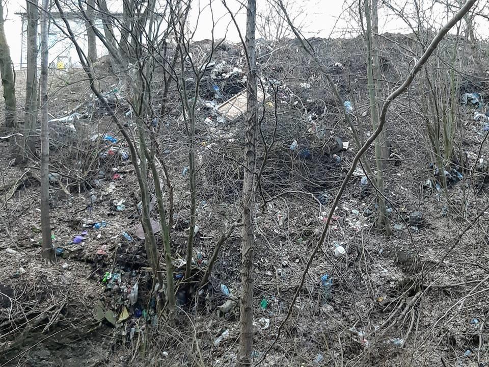 """На Тернопільщині на околиці міста """"виросло"""" величезне сміттєзвалище (ФОТОФАКТ), фото-7"""