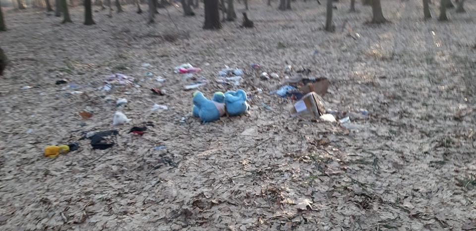 """На Тернопільщині на околиці міста """"виросло"""" величезне сміттєзвалище (ФОТОФАКТ), фото-10"""